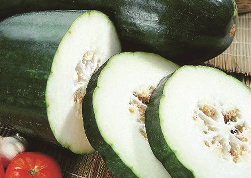 怀孕期间可以吃冬瓜吗
